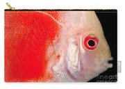 Common Discus Carry-all Pouch