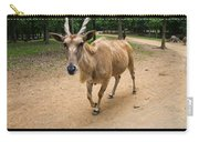 Common Eland Carry-all Pouch by Chris Flees