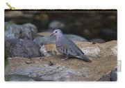 Common Ground-dove Carry-all Pouch
