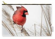 Common Northern Cardinal Square Carry-all Pouch