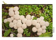 Common Puffball Mushrooms Lycoperdon Perlatum Carry-all Pouch