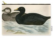 Common Scoter Carry-all Pouch