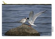 Common Tern Pictures 48 Carry-all Pouch