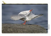 Common Tern Pictures 51 Carry-all Pouch