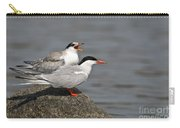 Common Tern Pictures 76 Carry-all Pouch