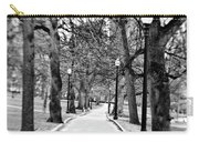 Commons Park Pathway Carry-all Pouch by Scott Pellegrin