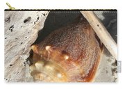 Conchs With Driftwood I Carry-all Pouch