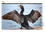 Conductor Carry-all Pouch by Deb Halloran