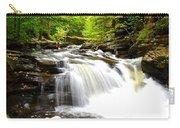 Conestoga Falls Carry-all Pouch