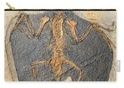 Confuciusornis Fossil Carry-all Pouch