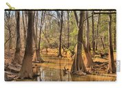 Congaree National Park Carry-all Pouch
