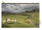 Coniston Sheep  Carry-all Pouch