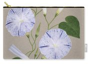 Convolvulus Cneorum Carry-all Pouch by Frances Buckland