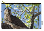 Cooper's Hawk In A Cottonwood Carry-all Pouch