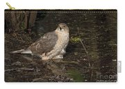 Coopers Hawk Pictures 135 Carry-all Pouch