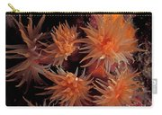 Corals, Tubastraea Sp. Underwaterpapua Carry-all Pouch