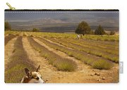Corgi And Mt Shasta Carry-all Pouch