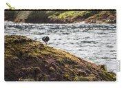 Cormorant - Montague Island - Australia Carry-all Pouch