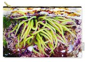 Cornish Rock Pool Snakelocks Anemone Carry-all Pouch