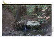 Corte Madera Creek On Mt. Tam In 2008 Carry-all Pouch