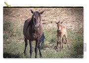 Cortez Colorado Mustangs Carry-all Pouch