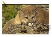 Cougar On Lichen Rock Carry-all Pouch