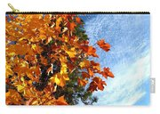 Country Color 30 Carry-all Pouch
