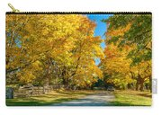 Country Lane Carry-all Pouch by Steve Harrington
