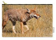 Coyote In Rocky Mountain National Park Carry-all Pouch