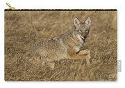 Coyote Running Carry-all Pouch