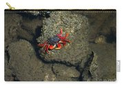 Crab Cake Carry-all Pouch
