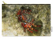 Crab In Cozumel Carry-all Pouch