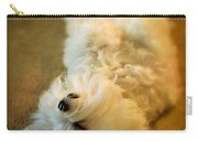 Crash Landing Upside Down Carry-all Pouch by Lois Bryan