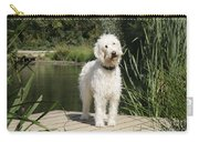 Cream Labradoodle Carry-all Pouch by John Daniels