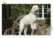 Cream Labradoodle On Wooden Chair Carry-all Pouch