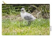 Crested Tern Chick - Montague Island - Australia Carry-all Pouch