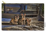 Cretan Cats-1 Carry-all Pouch