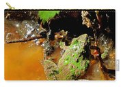 Cricket Frog Carry-all Pouch