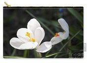 Crocus Flower Basking In Sunlight Carry-all Pouch by Elena Elisseeva