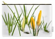 Crocuses In Snow Carry-all Pouch