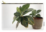 Croton Houseplant Carry-all Pouch