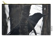 Crow Eye Carry-all Pouch