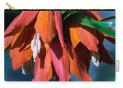 Crown Imperial Carry-all Pouch