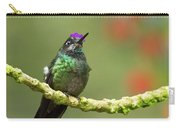 Crowned Hummingbird Carry-all Pouch