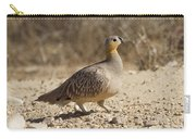 Crowned Sandgrouse Pterocles Coronatus Carry-all Pouch