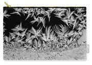 Crystal Feathers Carry-all Pouch
