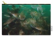 Cunner Fish Nova Scotia Carry-all Pouch