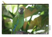 Curacao Parrot Carry-all Pouch