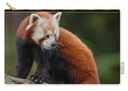Curious Critter Carry-all Pouch