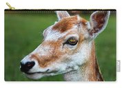 Curious Doe Carry-all Pouch by Mariola Bitner